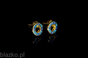 Earrings - Goldplated Wheels